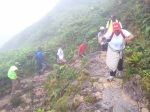 Sur la trace du sommet de la soufrière
