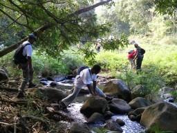 Traversée de rivière sur la trace