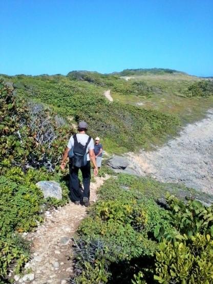 TRACE DES FALAISES : Boucle du sentier du Souffleur (5/6)