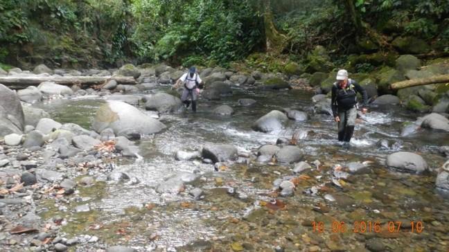Remontée de la rivière de Pérou