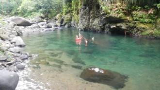 Un beau bassin incitant à la baignade