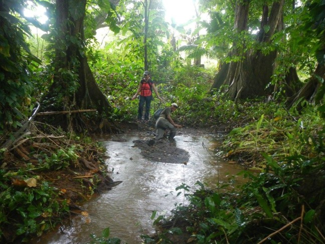 Un randonneur s'est enfoncé dans la boue